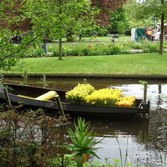 Boat full of tulips at Keukenhof gardens